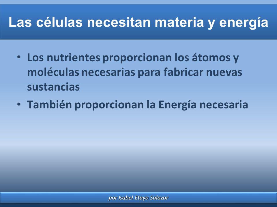 por Isabel Etayo Salazar Las células necesitan materia y energía Los nutrientes proporcionan los átomos y moléculas necesarias para fabricar nuevas su