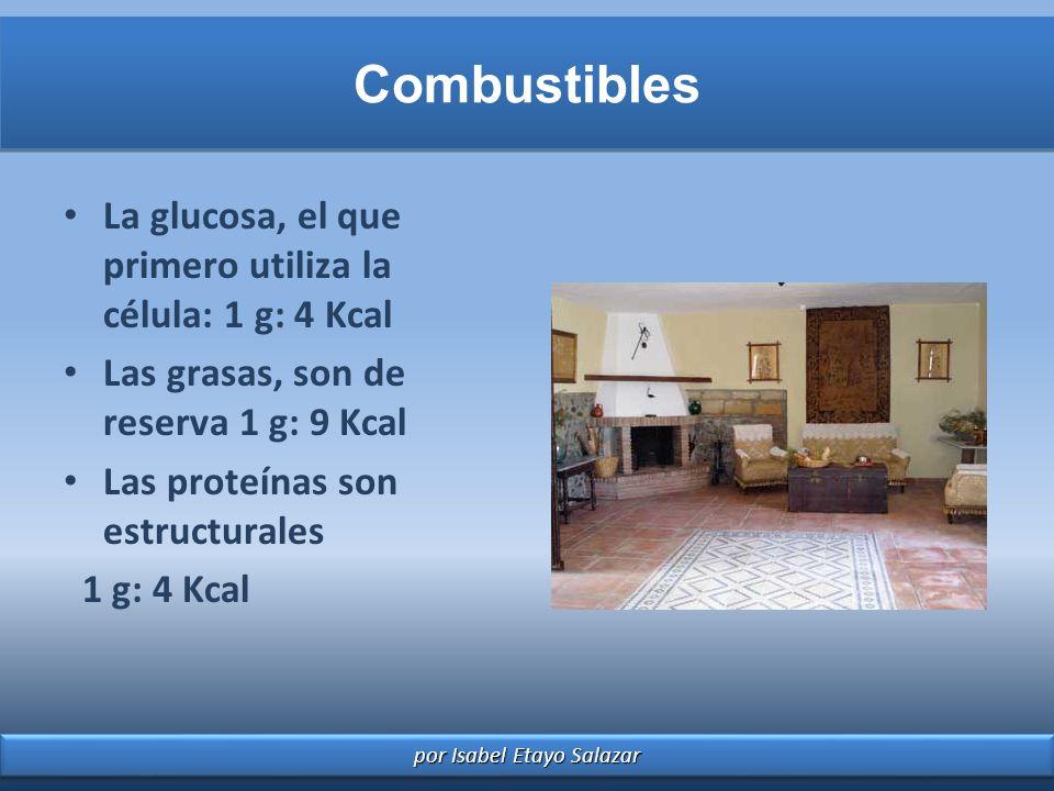 por Isabel Etayo Salazar Combustibles La glucosa, el que primero utiliza la célula: 1 g: 4 Kcal Las grasas, son de reserva 1 g: 9 Kcal Las proteínas s