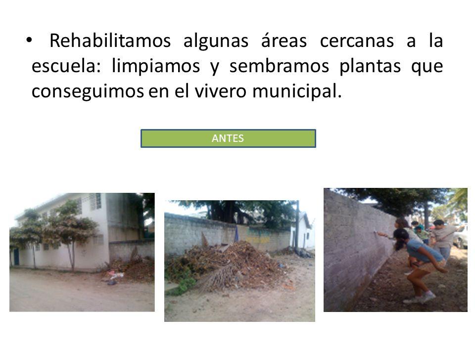 Rehabilitamos algunas áreas cercanas a la escuela: limpiamos y sembramos plantas que conseguimos en el vivero municipal. ANTES