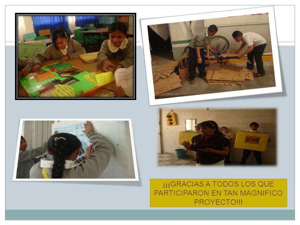 ¡¡¡GRACIAS A TODOS LOS QUE PARTICIPARON EN TAN MAGNIFICO PROYECTO!!!