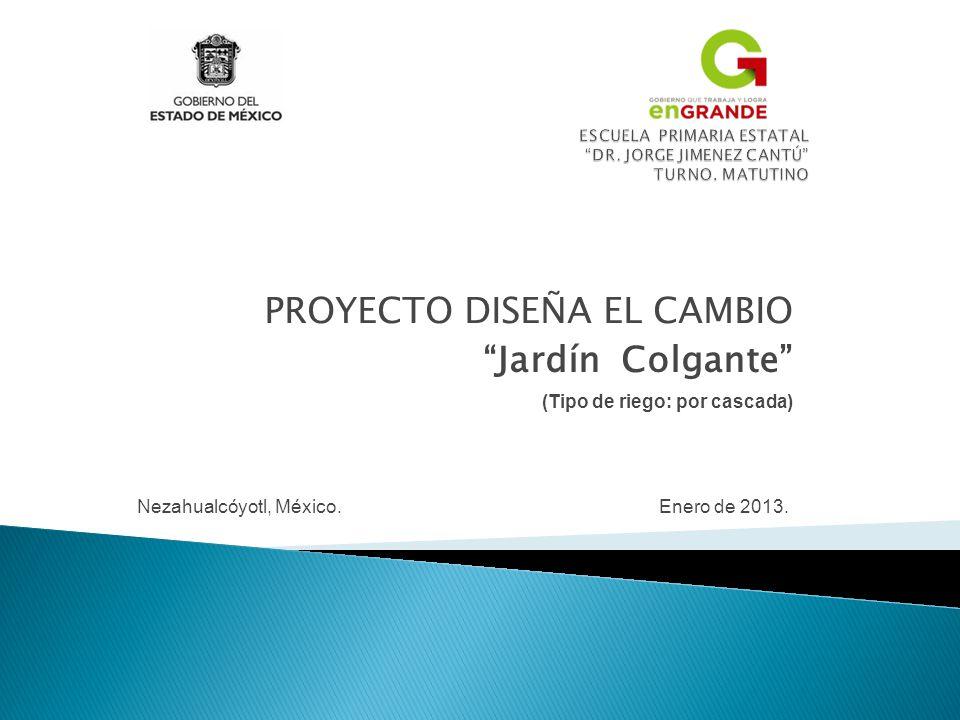 PROYECTO DISEÑA EL CAMBIO Jardín Colgante (Tipo de riego: por cascada) Nezahualcóyotl, México. Enero de 2013.