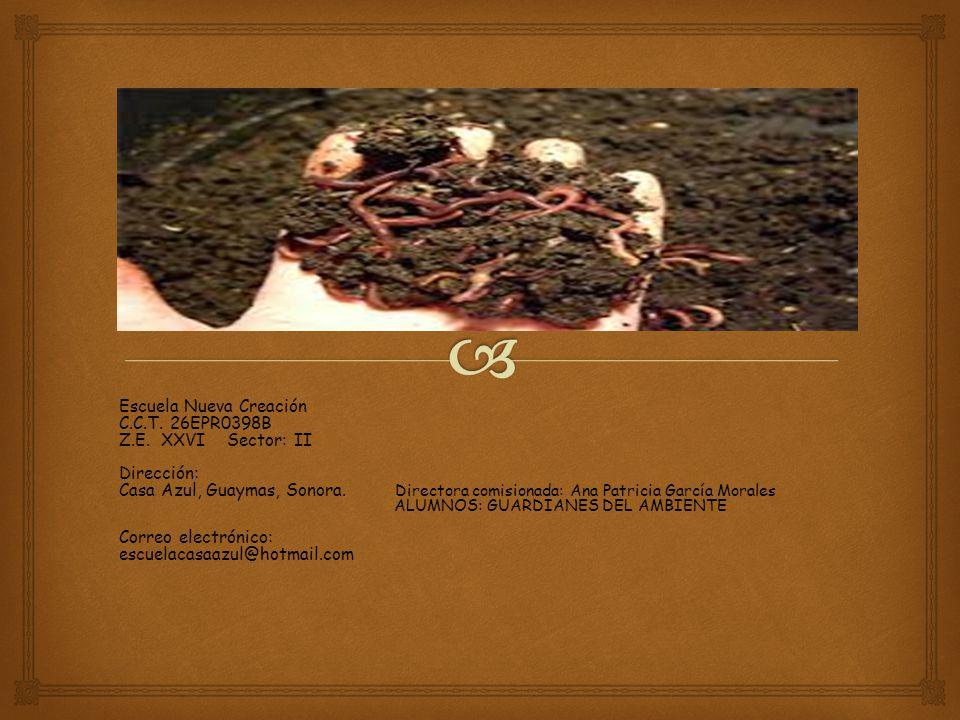 Escuela Nueva Creación C.C.T.26EPR0398B Z.E.