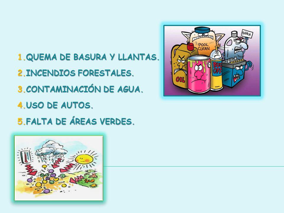 1.QUEMA DE BASURA Y LLANTAS. 2.INCENDIOS FORESTALES. 3.CONTAMINACIÓN DE AGUA. 4.USO DE AUTOS. 5.FALTA DE ÁREAS VERDES.