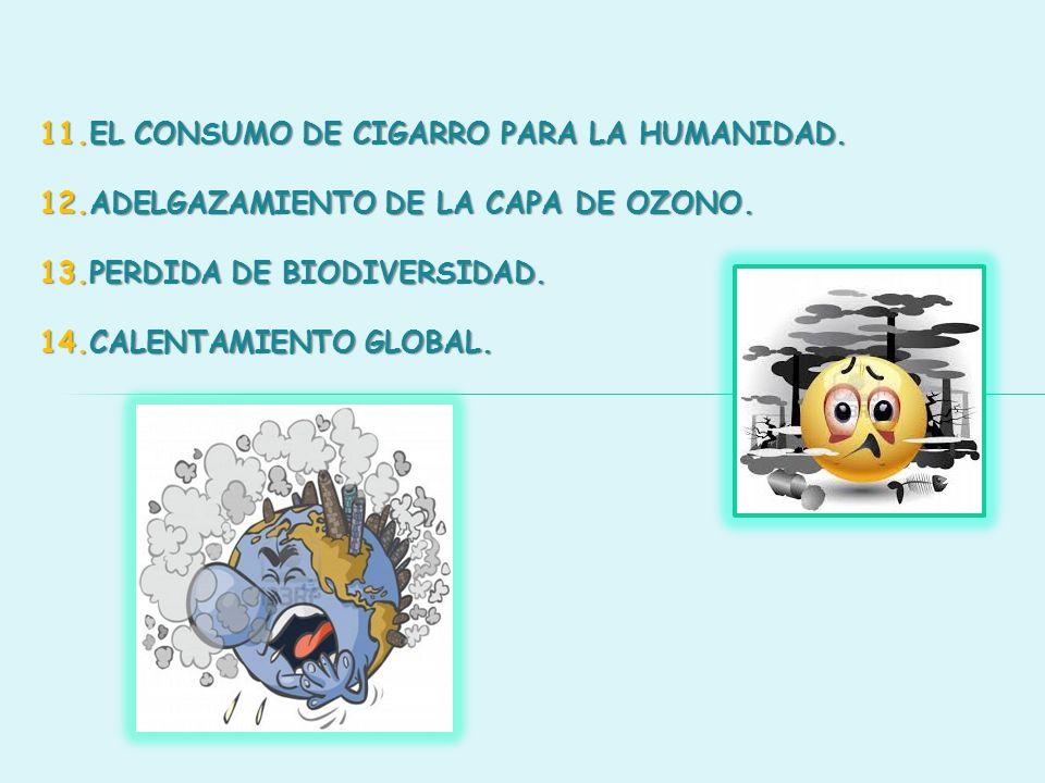11.EL CONSUMO DE CIGARRO PARA LA HUMANIDAD. 12.ADELGAZAMIENTO DE LA CAPA DE OZONO. 13.PERDIDA DE BIODIVERSIDAD. 14.CALENTAMIENTO GLOBAL.