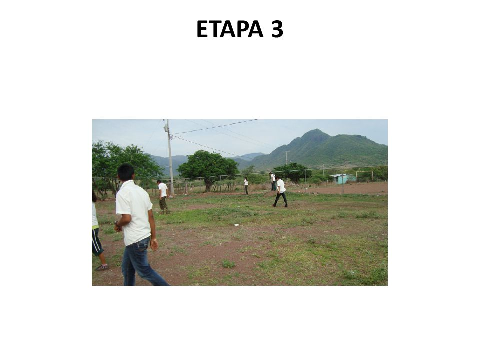 ETAPA 3