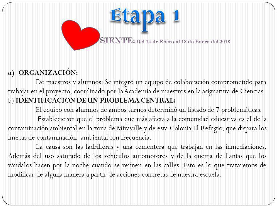 COMPARTE: Del 8 de abril al 5 de mayo 2013 ANTESDESPUÉS TRANSFORMA