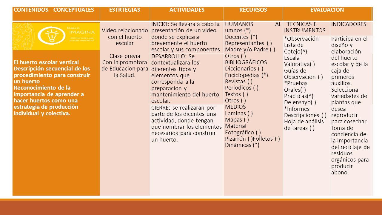 CONTENIDOS CONCEPTUALESESTRTEGIASACTIVIDADESRECURSOSEVALUACION El huerto escolar vertical Descripción secuencial de los procedimiento para construir u