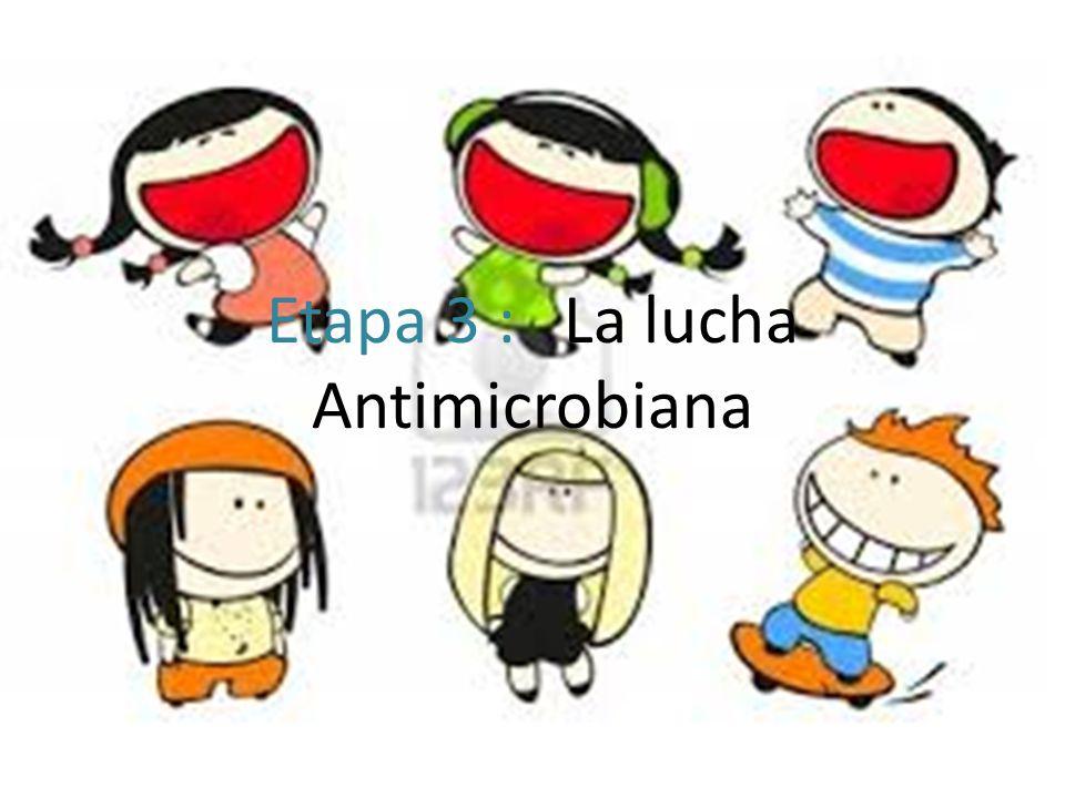 Etapa 3 : La lucha Antimicrobiana