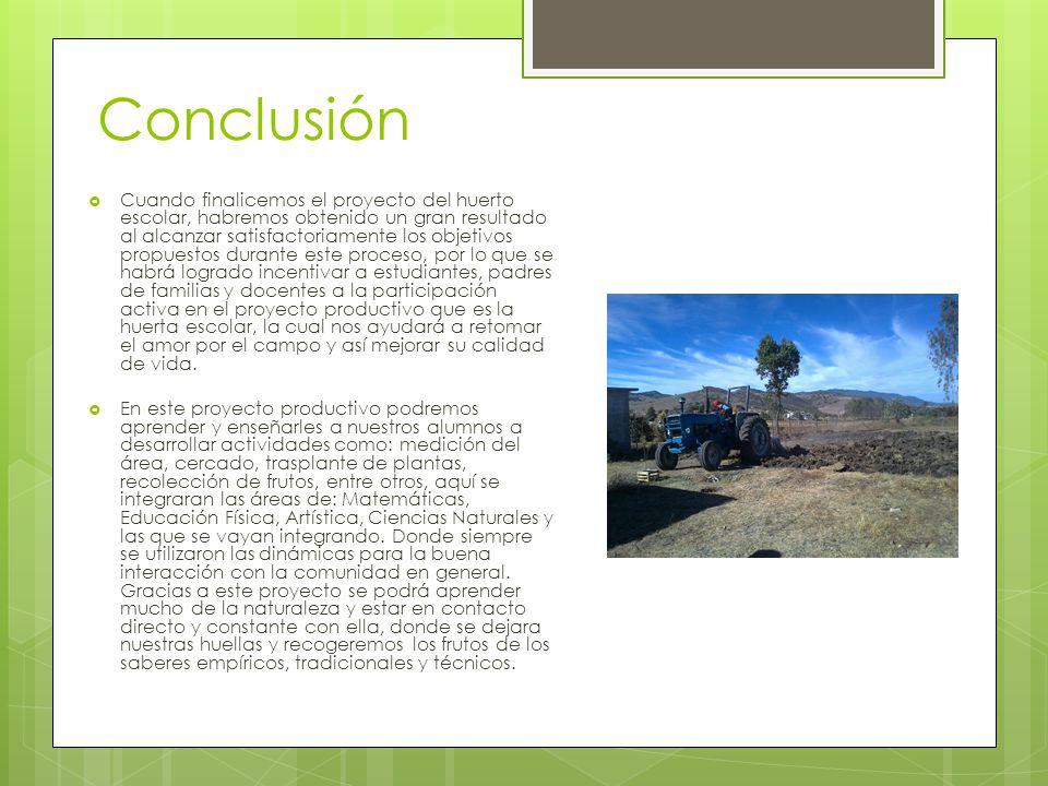 Conclusión Cuando finalicemos el proyecto del huerto escolar, habremos obtenido un gran resultado al alcanzar satisfactoriamente los objetivos propues