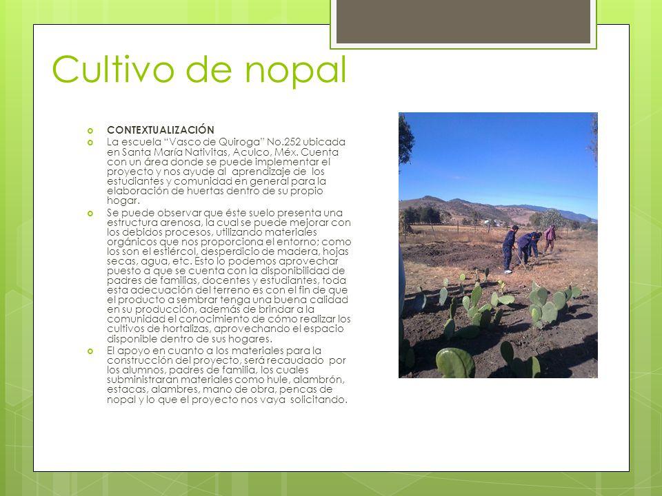 Cultivo de nopal CONTEXTUALIZACIÓN La escuela Vasco de Quiroga No.252 ubicada en Santa María Nativitas, Aculco, Méx. Cuenta con un área donde se puede