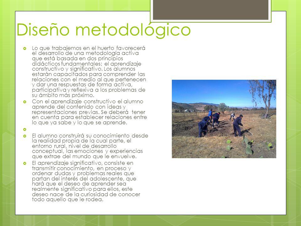 Diseño metodológico Lo que trabajemos en el huerto favorecerá el desarrollo de una metodología activa que está basada en dos principios didácticos fun