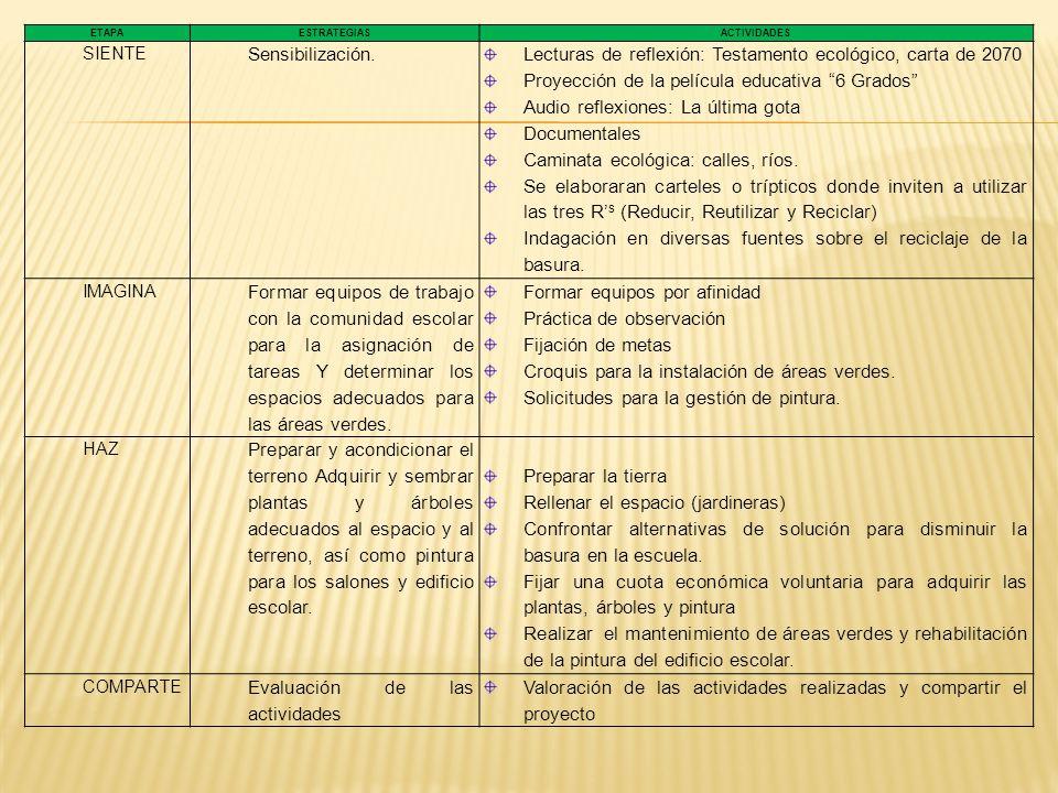 ETAPA ACTIVIDADES TIEMPORESPONSABLES 1ª.
