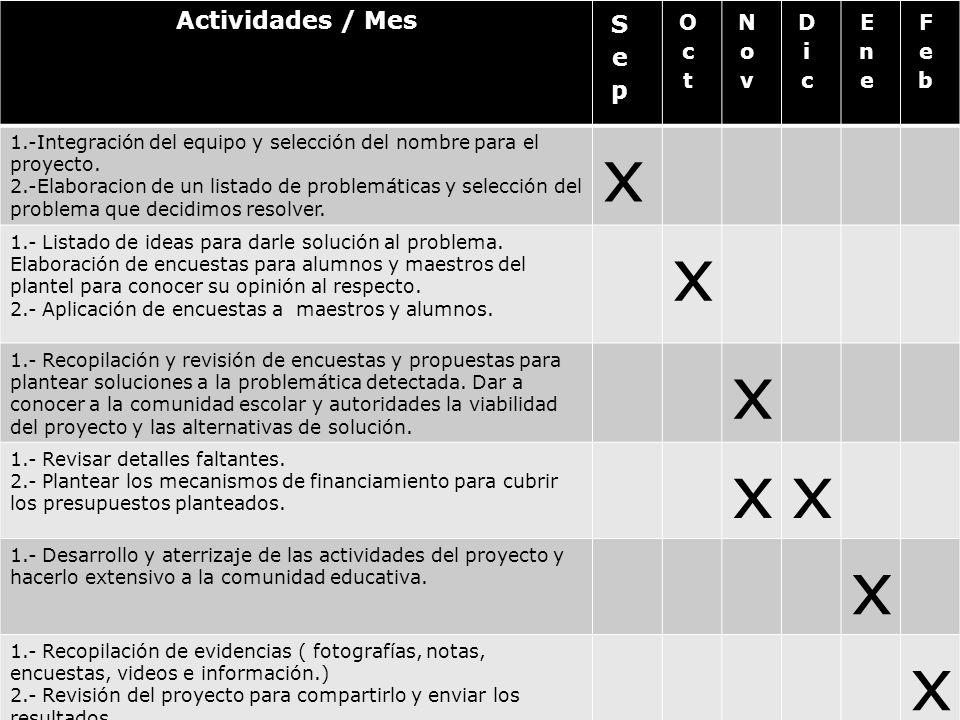 Actividades / Mes 1.-Integración del equipo y selección del nombre para el proyecto. 2.-Elaboracion de un listado de problemáticas y selección del pro