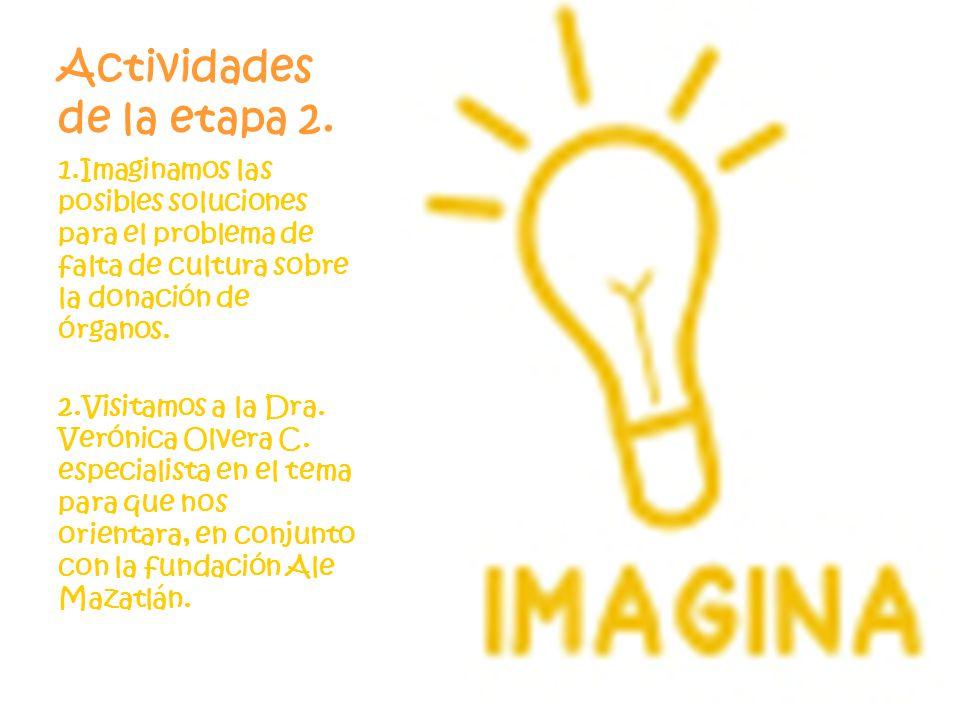 Actividades de la etapa 2. 1.Imaginamos las posibles soluciones para el problema de falta de cultura sobre la donación de órganos. 2.Visitamos a la Dr