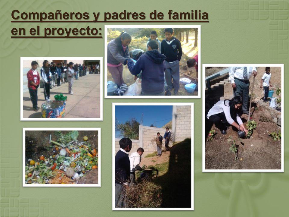 Compañeros y padres de familia en el proyecto: