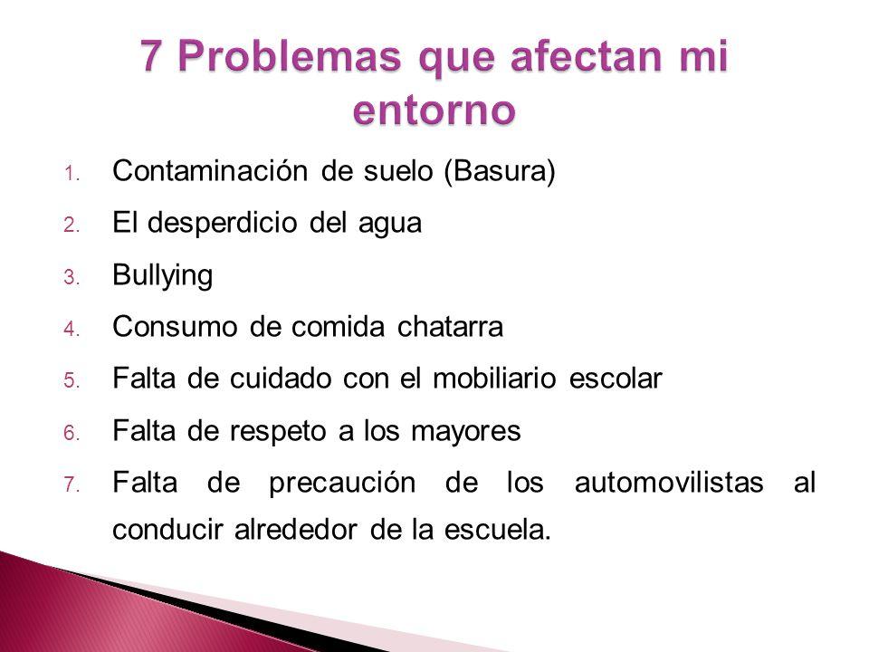 1.Contaminación de suelo (Basura) 2. El desperdicio del agua 3.