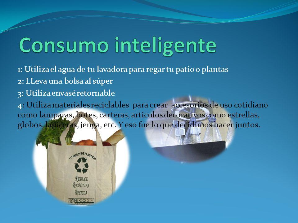 Incluir materiales reciclados para realizar actividades académicas, especialmente de la asignatura de Educación Artística y Educación Física.
