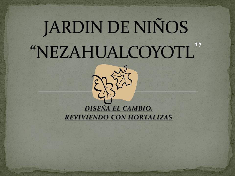 DISEÑA EL CAMBIO. REVIVIENDO CON HORTALIZAS