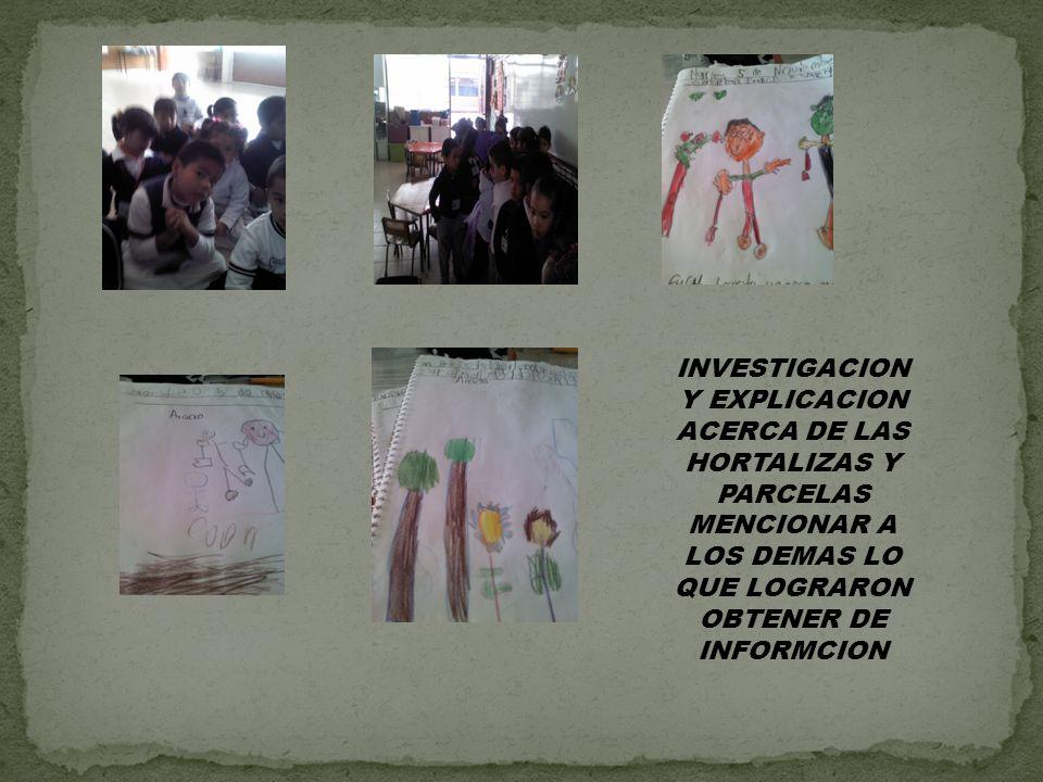INVESTIGACION Y EXPLICACION ACERCA DE LAS HORTALIZAS Y PARCELAS MENCIONAR A LOS DEMAS LO QUE LOGRARON OBTENER DE INFORMCION