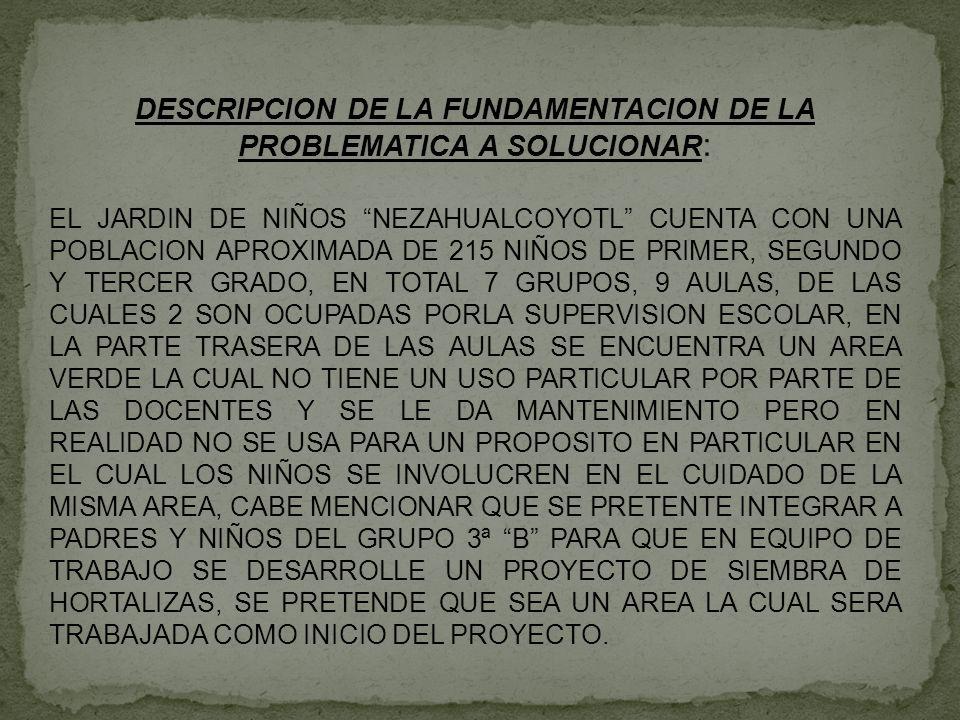 SE PRETENDE FOMENTAR LA CONVIVENCIA Y APRENDAN A REALIZAR HORTALIZAS PARA SU BENEFICIO, TOMANDO EN CUENTA QUE EL USO DE ESTAS SE PUEDE REALIZAR EN CASA CON CADA UNO DE LOS PADRES DE FAMIOLIA Y LOS NIÑOS COMPRENDAN EL USO DELAS MISMAS FOMENTANDO LA PARTICIPACION Y LA COMPRENSION DEL ALUMNO PARA EL CUIDADO DEL MEDIO EN EL QUE SE DESENVUELVE.