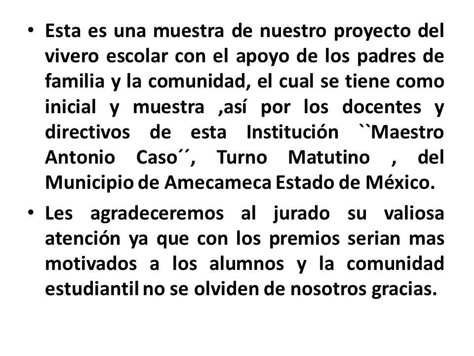 Esta es una muestra de nuestro proyecto del vivero escolar con el apoyo de los padres de familia y la comunidad, el cual se tiene como inicial y muestra,así por los docentes y directivos de esta Institución ``Maestro Antonio Caso´´, Turno Matutino, del Municipio de Amecameca Estado de México.