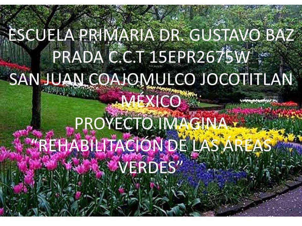 ESCUELA PRIMARIA DR. GUSTAVO BAZ PRADA C.C.T 15EPR2675W SAN JUAN COAJOMULCO JOCOTITLAN MÉXICO PROYECTO IMAGINA REHABILITACIÓN DE LAS ÁREAS VERDES