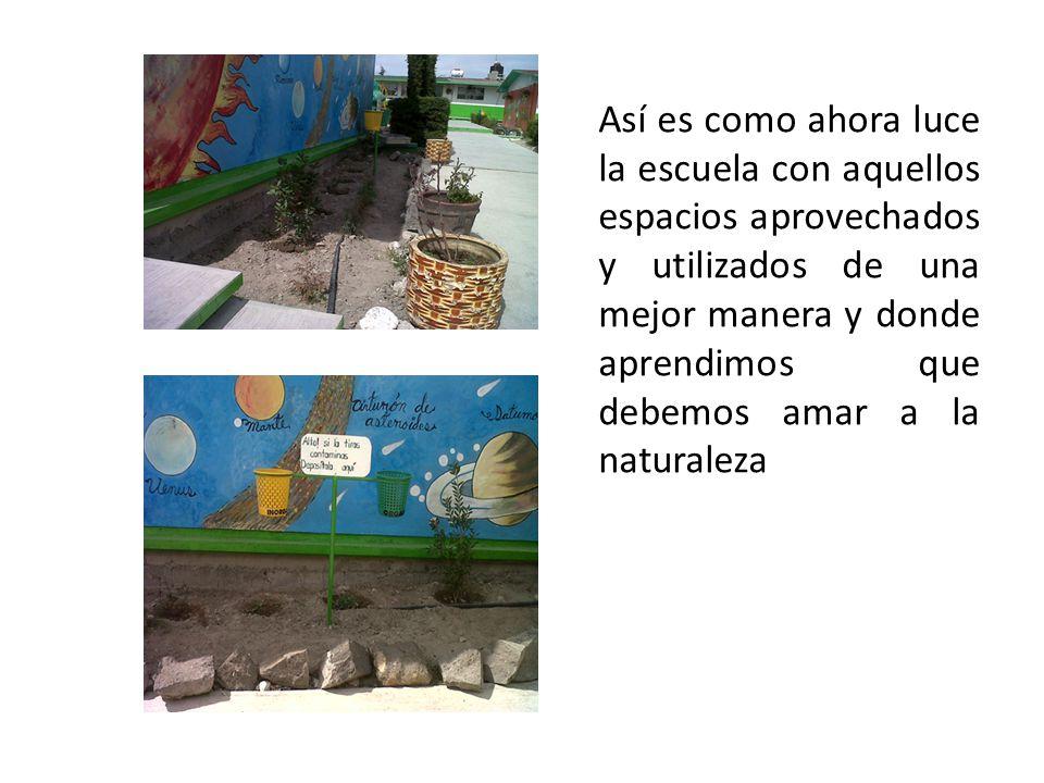 Así es como ahora luce la escuela con aquellos espacios aprovechados y utilizados de una mejor manera y donde aprendimos que debemos amar a la natural
