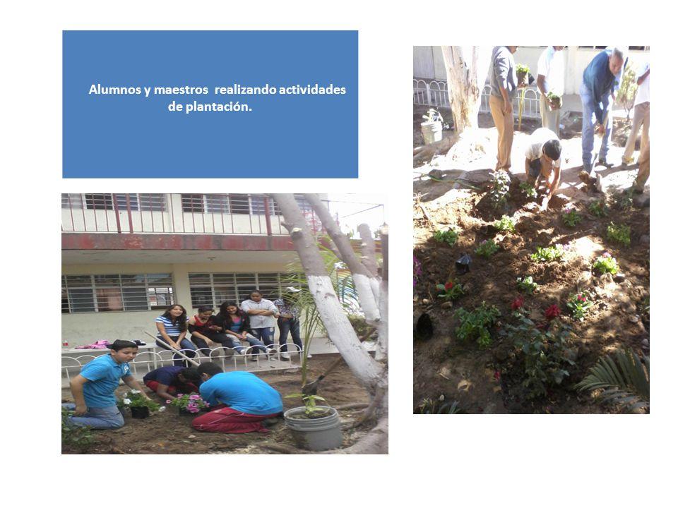 Alumnos y maestros realizando actividades de plantación.