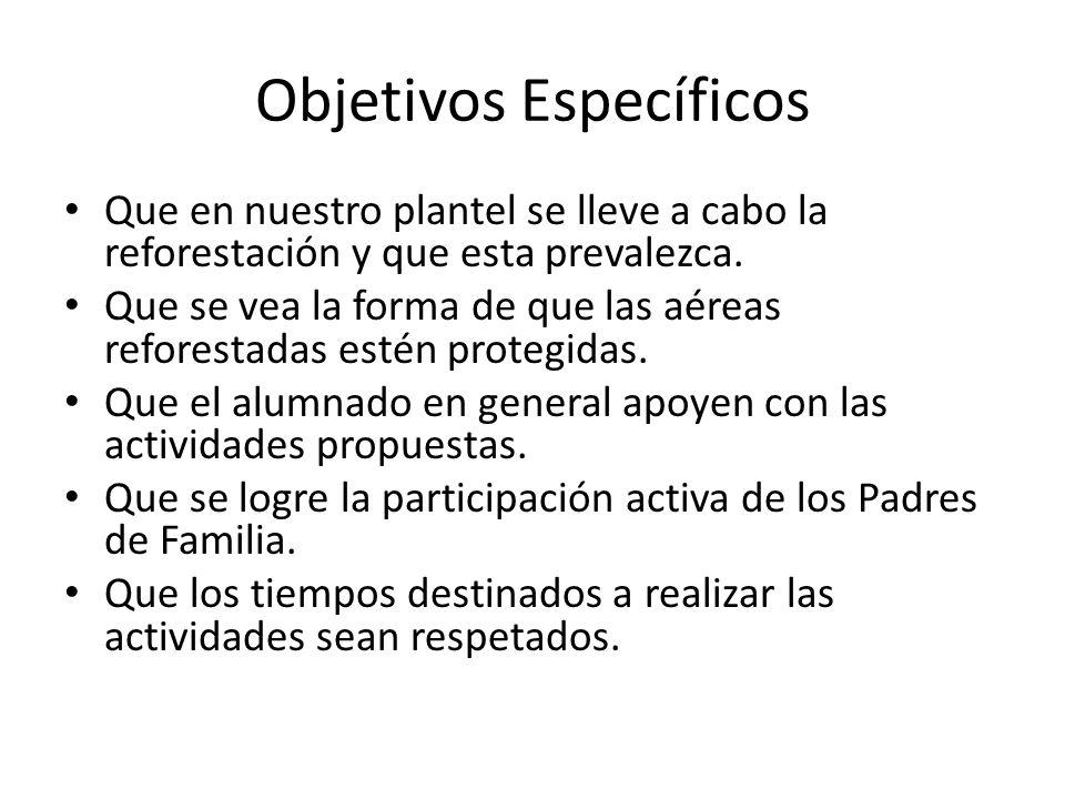 Objetivos Específicos Que en nuestro plantel se lleve a cabo la reforestación y que esta prevalezca. Que se vea la forma de que las aéreas reforestada
