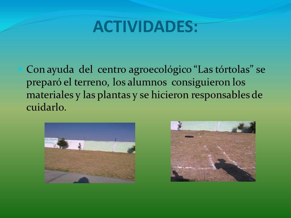 ACTIVIDADES: Con ayuda del centro agroecológico Las tórtolas se preparó el terreno, los alumnos consiguieron los materiales y las plantas y se hicieron responsables de cuidarlo.