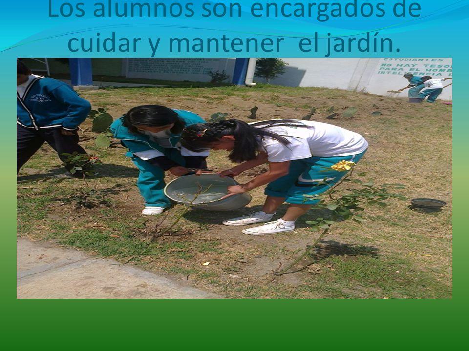 Los alumnos son encargados de cuidar y mantener el jardín.