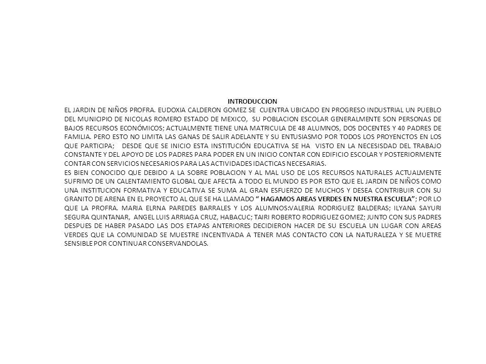OBJETIVO GENERAL CREAR AREAS VERDES EN EL JARDIN DE NIÑOS CON EL APOYO DE LOS PADRES DE FAMILIA Y ALUMNOS PARA CONTRIBUIR A CONSIENTIZAR A LA COMUNIDAD DE PRESERVAR EL MEDIO AMBIENTE OBJERIVOS ESPECÍFICOS GESTIONAR ANTE EL MUNICIPIO PARA QUE S ENVIE MAQUINARIA Y RELLENAR LOS ESPACIOS DE LA ESCUELA PARA HACER AREAS DE JUEGO PARA LOS ALUMNOS CONVOCAR A LOS PADRES DE FAMILIA PARA HACER ALGUNAS JARDINERAS Y PREPARAR EL TERRENO PARA PODER SEMBRAR PLANTAS.