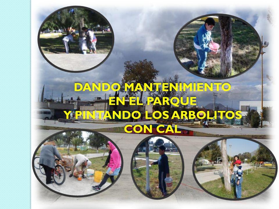 DANDO MANTENIMIENTO EN EL PARQUE Y PINTANDO LOS ARBOLITOS CON CAL DANDO MANTENIMIENTO EN EL PARQUE Y PINTANDO LOS ARBOLITOS CON CAL