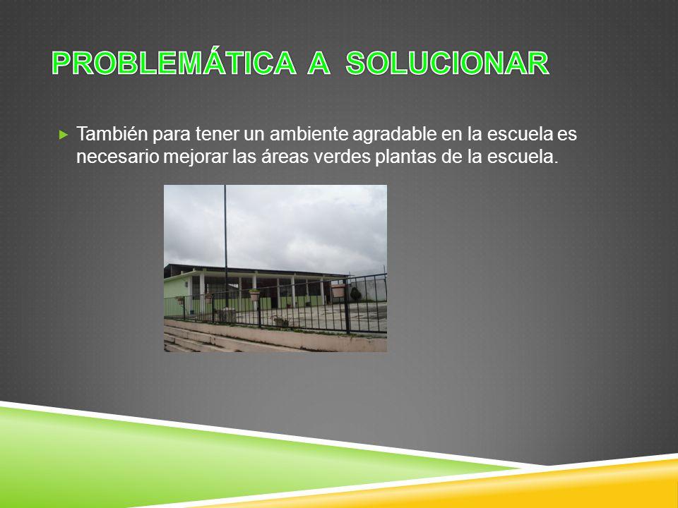 También para tener un ambiente agradable en la escuela es necesario mejorar las áreas verdes plantas de la escuela.