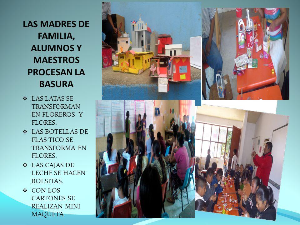 LAS MADRES DE FAMILIA, ALUMNOS Y MAESTROS PROCESAN LA BASURA LAS LATAS SE TRANSFORMAN EN FLOREROS Y FLORES.