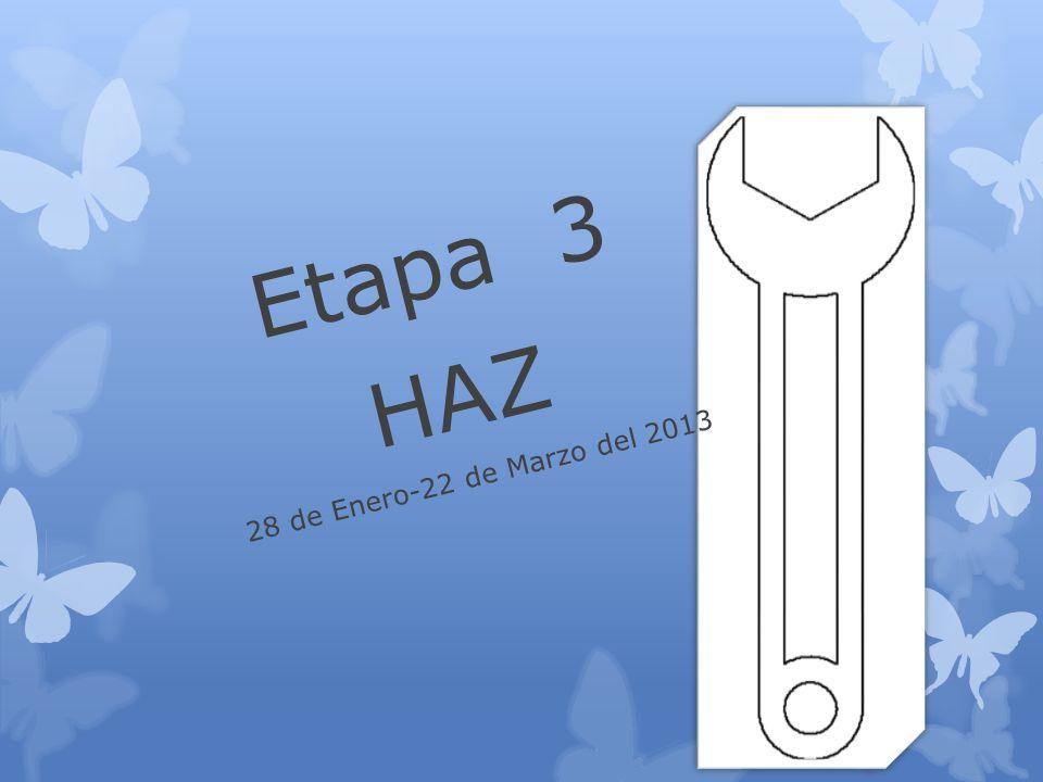 Etapa 3 HAZ 28 de Enero-22 de Marzo del 2013
