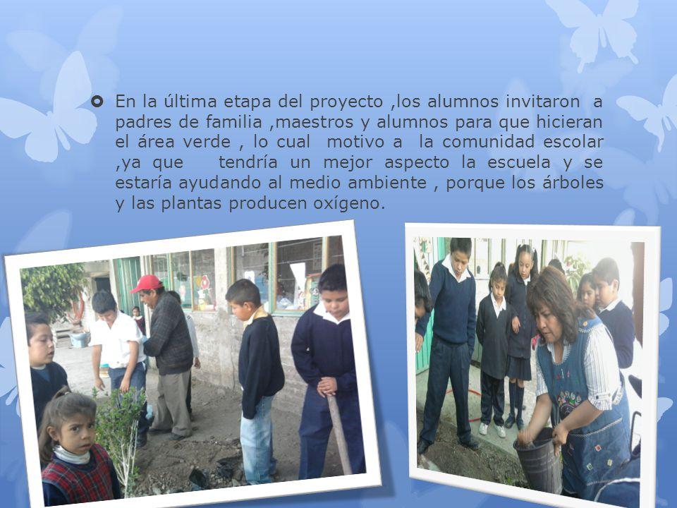 En la última etapa del proyecto,los alumnos invitaron a padres de familia,maestros y alumnos para que hicieran el área verde, lo cual motivo a la comu