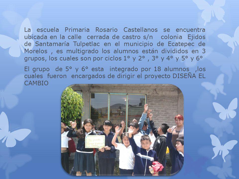 La escuela Primaria Rosario Castellanos se encuentra ubicada en la calle cerrada de castro s/n colonia Ejidos de Santamaría Tulpetlac en el municipio