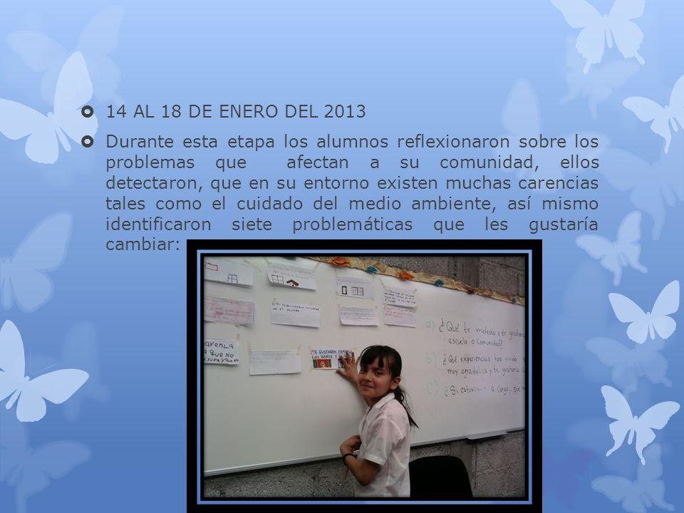 14 AL 18 DE ENERO DEL 2013 Durante esta etapa los alumnos reflexionaron sobre los problemas que afectan a su comunidad, ellos detectaron, que en su en