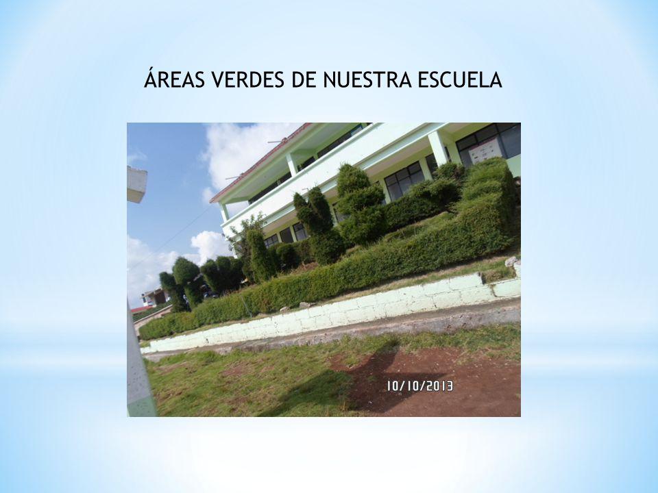 ÁREAS VERDES DE NUESTRA ESCUELA