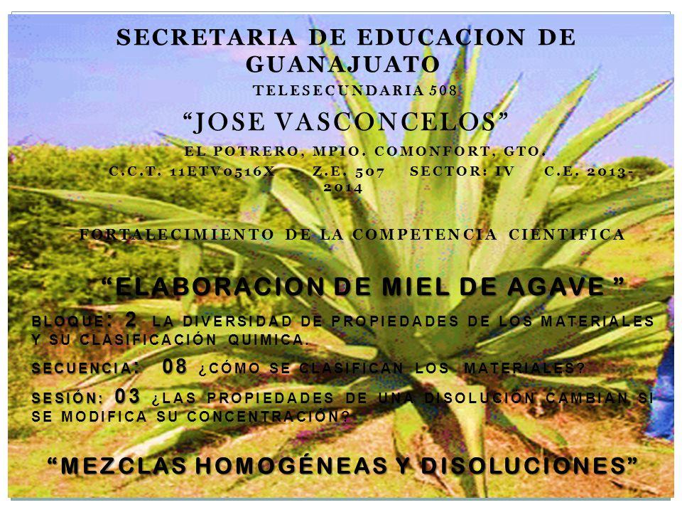 SECRETARIA DE EDUCACION DE GUANAJUATO TELESECUNDARIA 508 JOSE VASCONCELOS EL POTRERO, MPIO. COMONFORT, GTO. C.C.T. 11ETV0516X Z.E. 507 SECTOR: IV C.E.