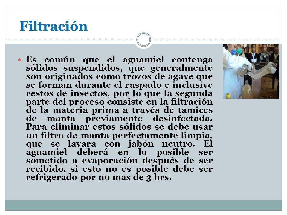 Filtración Es común que el aguamiel contenga sólidos suspendidos, que generalmente son originados como trozos de agave que se forman durante el raspad