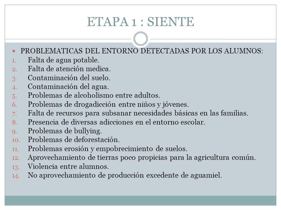 ETAPA 1 : SIENTE PROBLEMATICAS DEL ENTORNO DETECTADAS POR LOS ALUMNOS: 1. Falta de agua potable. 2. Falta de atención medica. 3. Contaminación del sue