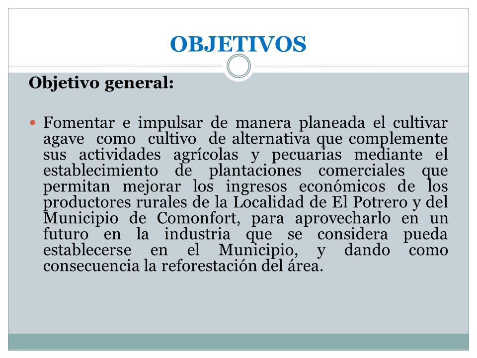 OBJETIVOS Objetivo general: Fomentar e impulsar de manera planeada el cultivar agave como cultivo de alternativa que complemente sus actividades agríc