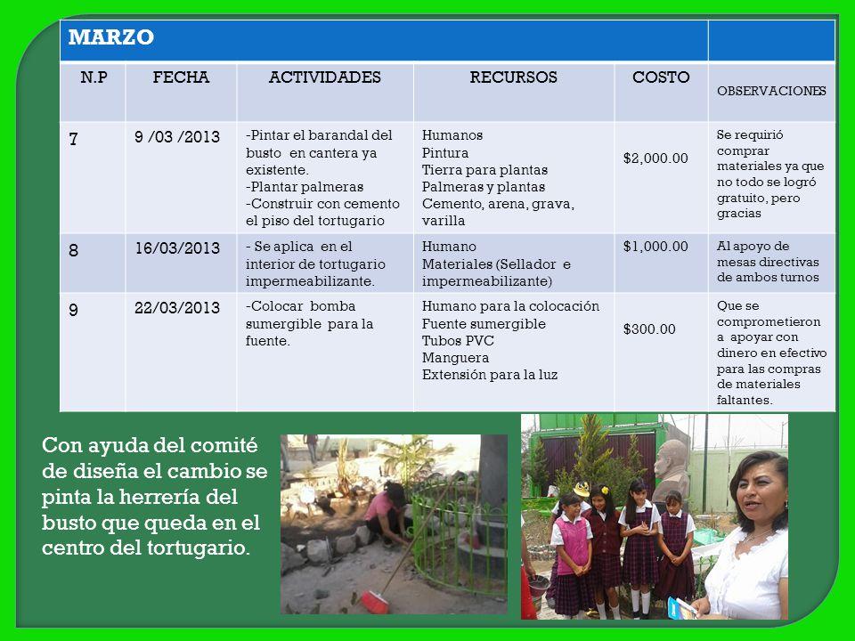 MARZO N.PFECHAACTIVIDADESRECURSOSCOSTO OBSERVACIONES 7 9 /03 /2013 -Pintar el barandal del busto en cantera ya existente. -Plantar palmeras -Construir