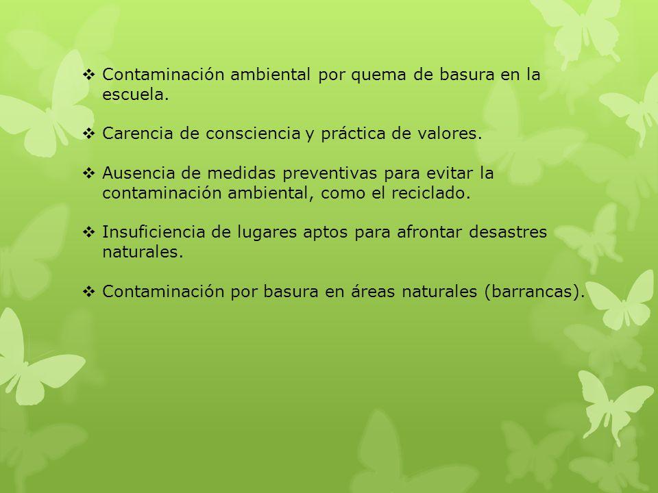 Contaminación ambiental por quema de basura en la escuela. Carencia de consciencia y práctica de valores. Ausencia de medidas preventivas para evitar