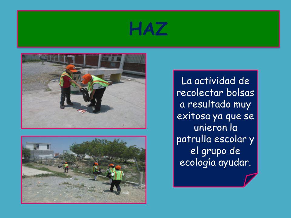 La actividad de recolectar bolsas a resultado muy exitosa ya que se unieron la patrulla escolar y el grupo de ecología ayudar.