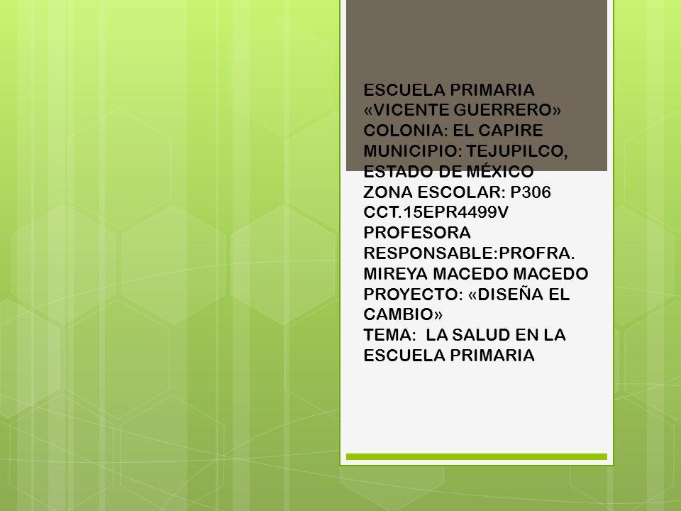ESCUELA PRIMARIA «VICENTE GUERRERO» COLONIA: EL CAPIRE MUNICIPIO: TEJUPILCO, ESTADO DE MÉXICO ZONA ESCOLAR: P306 CCT.15EPR4499V PROFESORA RESPONSABLE: