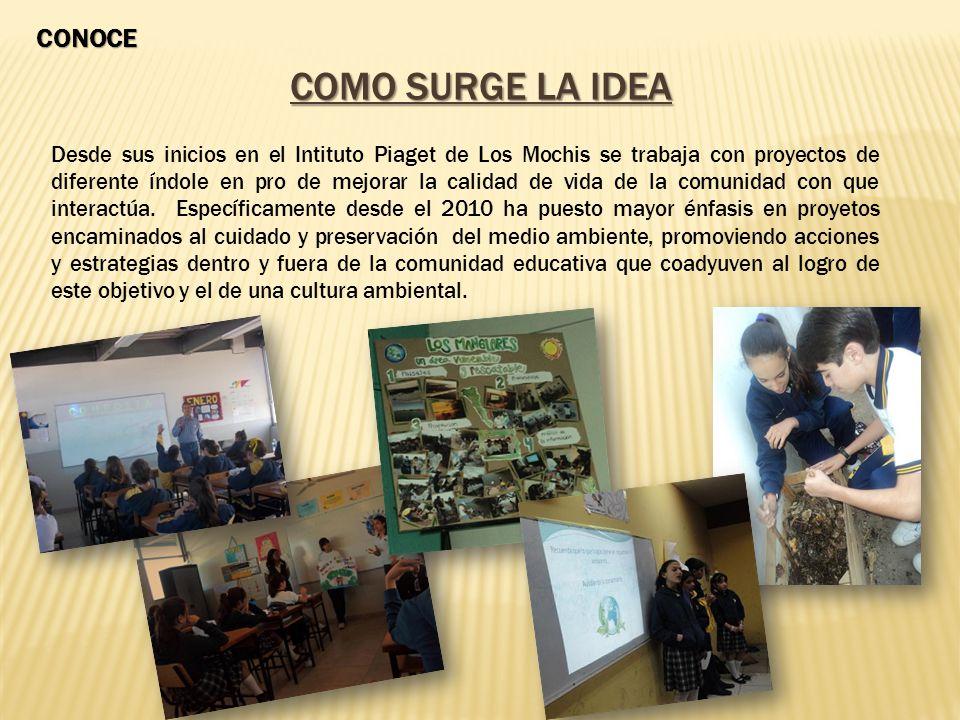 COMO SURGE LA IDEA Desde sus inicios en el Intituto Piaget de Los Mochis se trabaja con proyectos de diferente índole en pro de mejorar la calidad de vida de la comunidad con que interactúa.
