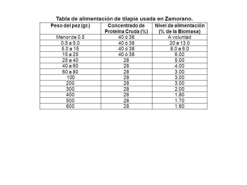 Peso del pez (gr.) Concentrado de Proteína Cruda (%) Nivel de alimentación (% de la Biomasa) Menor de 0.540 ó 38A voluntad 0.5 a 5.040 ó 3820 a 13.0 5.0 a 1540 ó 388.0 a 6.0 15 a 2540 ó 386.00 25 a 40285.00 40 a 60284.00 60 a 80283.00 100283.00 200283.00 300282.00 400281.80 500281.70 600281.60 Tabla de alimentación de tilapia usada en Zamorano.
